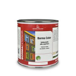Borma Color High Coverage Undercoat Enamel 6910